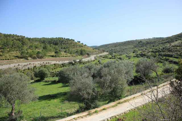 property land parcel for sale ragusa